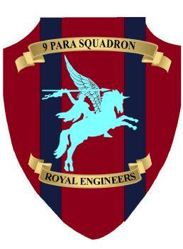9 Para Squadron Plaque